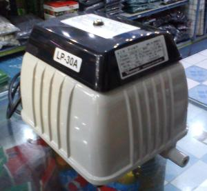 DSC00832-1
