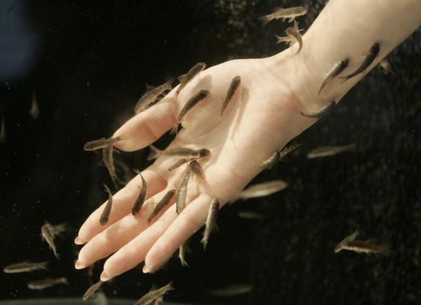 Terapi tangan