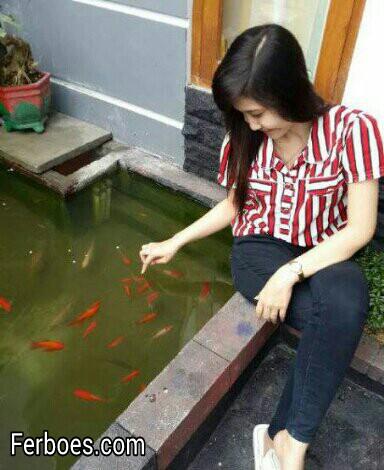 Ikan Yang Cocok Dipelihara diKolam...!!!
