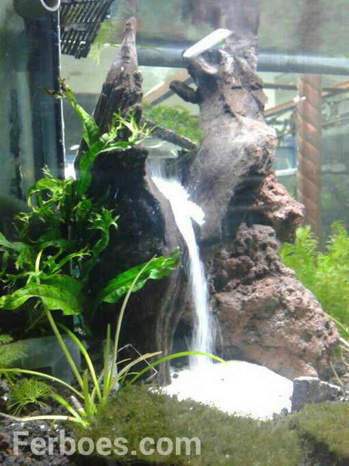Learn and make aquascape waterfall learning and creating for Aquarium waterfall decoration