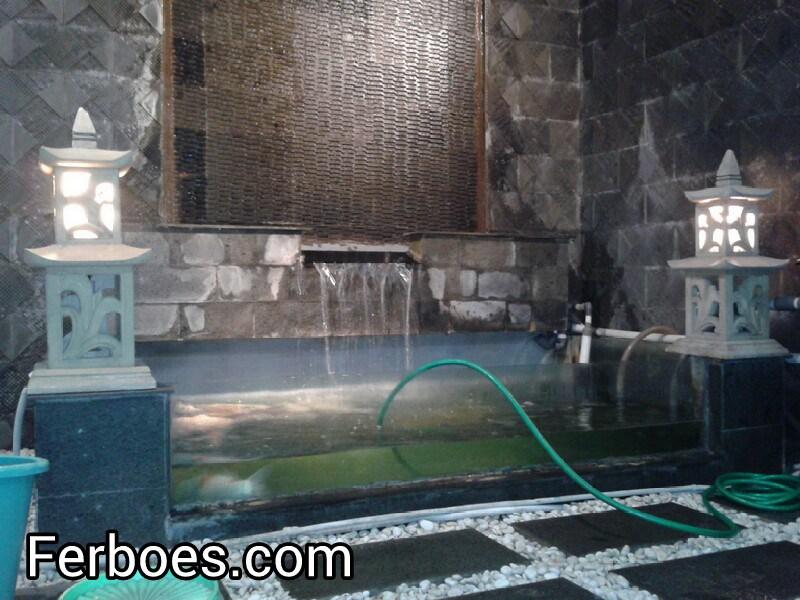 Solusi Mengatasi Air Aquarium/Kolam Yang Hijau...!!!
