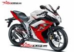 Suzuki gsxr150 red white.jpg