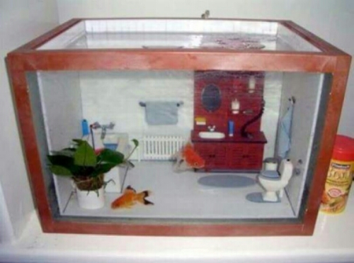 Декорация в аквариум своими руками