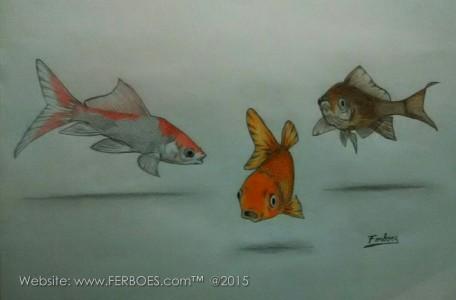 Menggambar ikan koki.jpg
