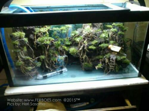 Miniatur Rumah Rumahan Untuk Accesories Aquarium Ferboes Com
