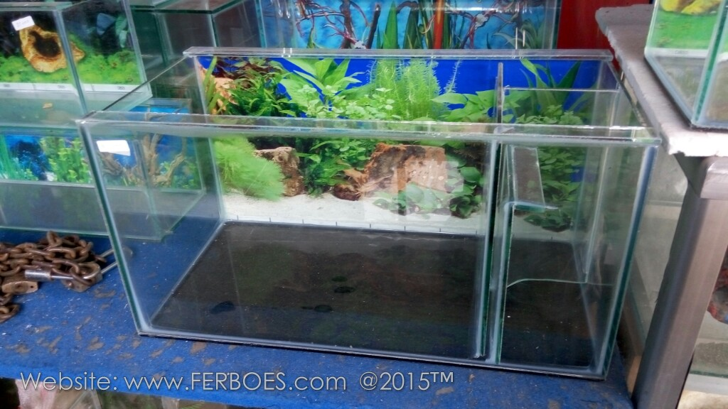 Harga aquarium murah meriah guys for Aquarium katalog