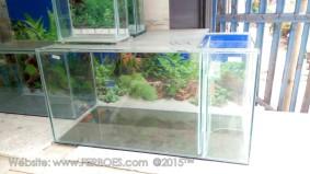 Aquarium murah meriah_5.jpg
