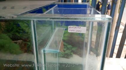 Aquarium murah meriah_4.jpg