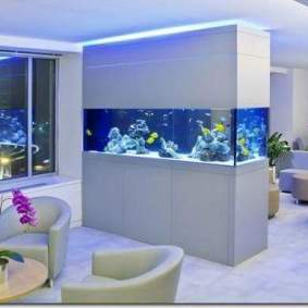 Inspirasi aquarium-3