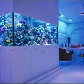 Inspirasi aquarium-7