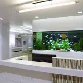 Inspirasi aquarium-13