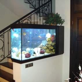 Insporasi aquarium-14