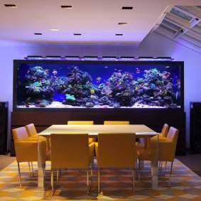 Inspirasi aquarium-17